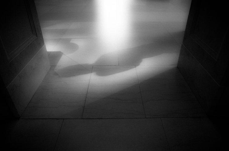 Shadow Life, XIV